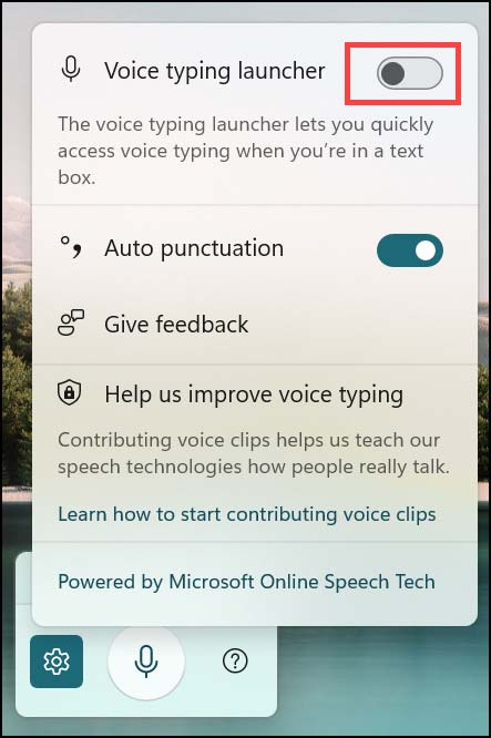 enable voice typing launcher